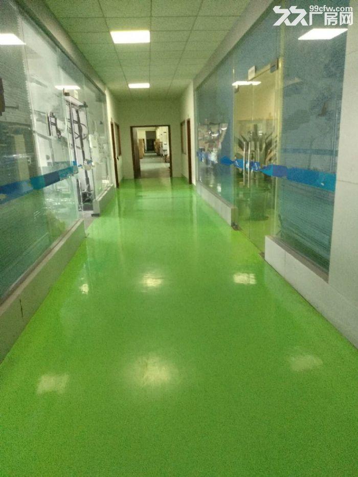 江海高新区2楼1200方厂房出租带精装修办公室-图(6)