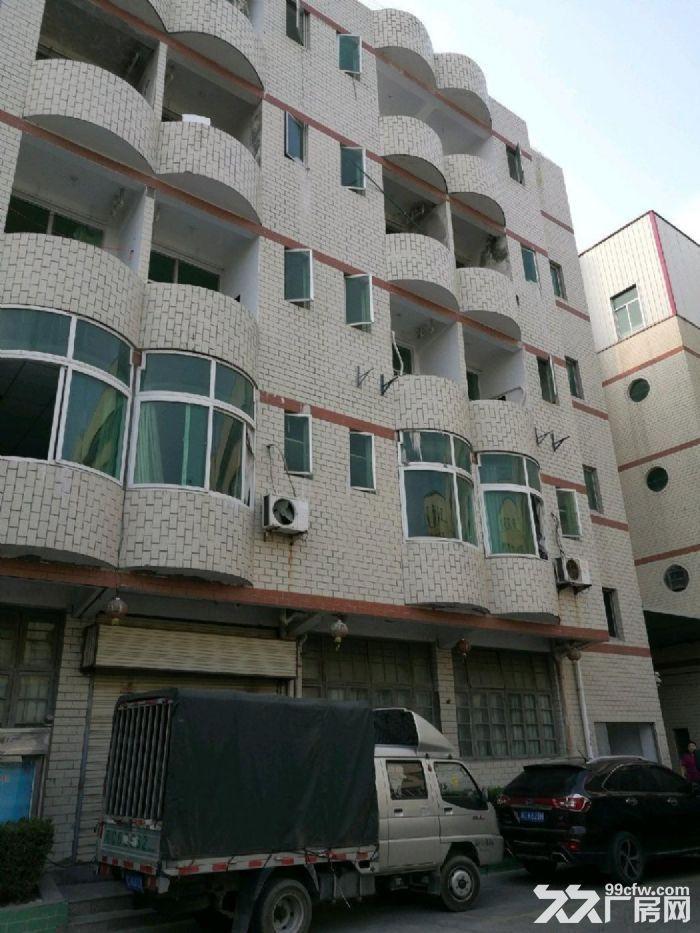 火炬工业区标准厂房6900平米宿舍办公2848平可分租-图(1)