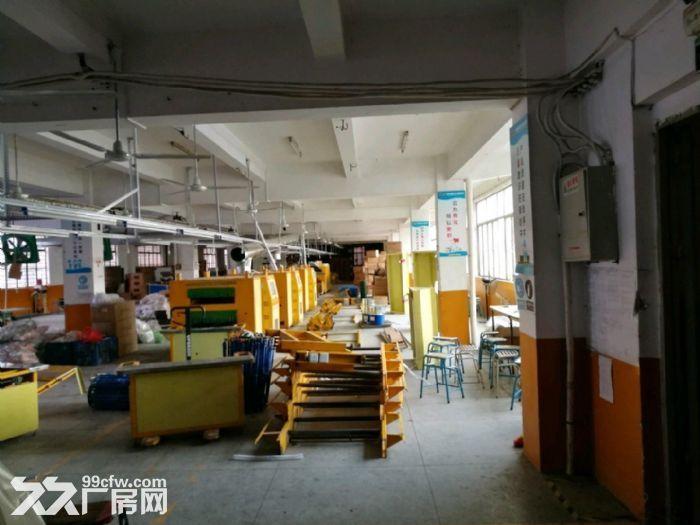 火炬工业区标准厂房6900平米宿舍办公2848平可分租-图(2)