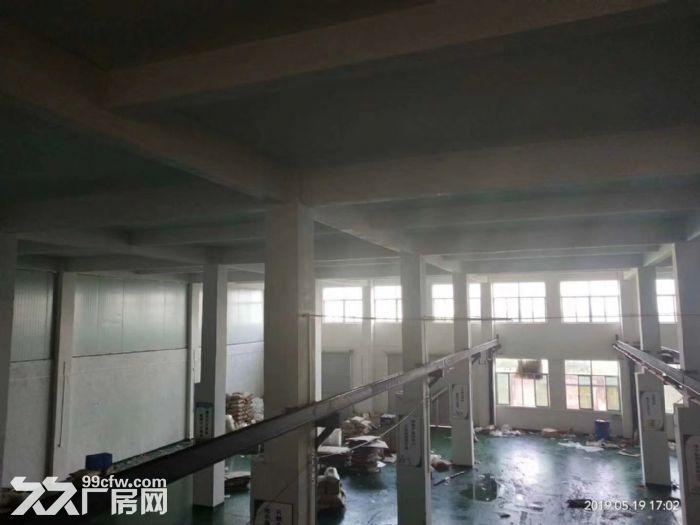 江海高新区标准厂房1500方出租带行吊带装修-图(3)