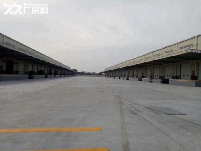 32000方丙二类高台仓库出租-图(3)