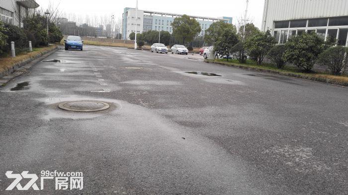 V滨江分租18000平起租1000平2000平5000平-图(3)