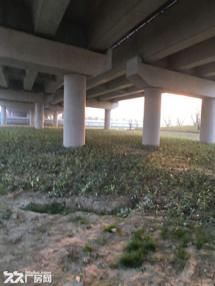 S35泰镇高速桥下可种植可售卖可仓储6处场地出租-图(3)