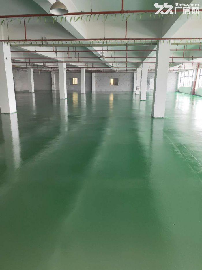 苏州园区好地段有一楼800平米好厂房出租-图(1)