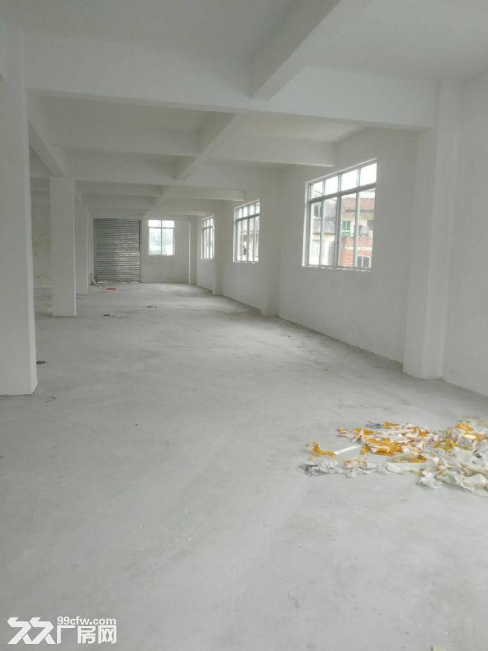 蓬江区杜阮镇楼上600方厂房出租厂房形象好可分租-图(2)