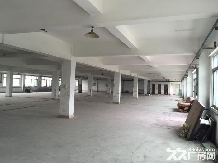 3600m花都工业区厂房出租-图(5)