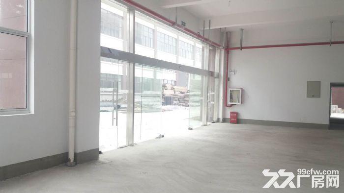 直招4000平全新精装厂房,环境好交通便利-图(5)