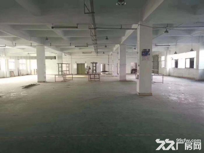 沙井后亭新出红本一楼1200平精装厂房出租可办环评-图(4)