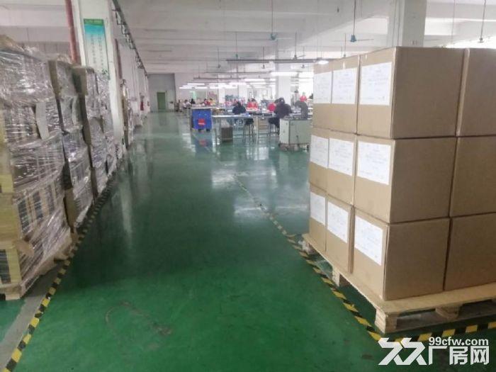 龙岗地铁口2000平电商办公厂房出租100平起分租-图(4)