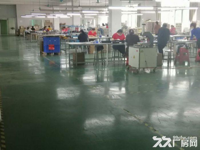 龙岗地铁口2000平电商办公厂房出租100平起分租-图(3)