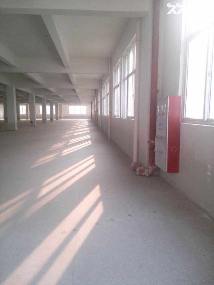 后溪标准厂房1楼2楼3000平一起出租-图(1)