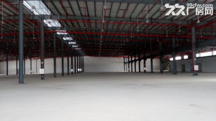 金湾8000平方独院单层钢构厂房出租-图(2)