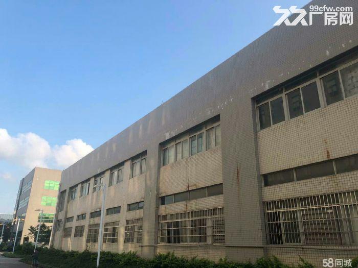 金湾8000平方独院单层钢构厂房出租-图(3)