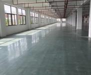 石井钢结构厂房8000平方招租-图(1)