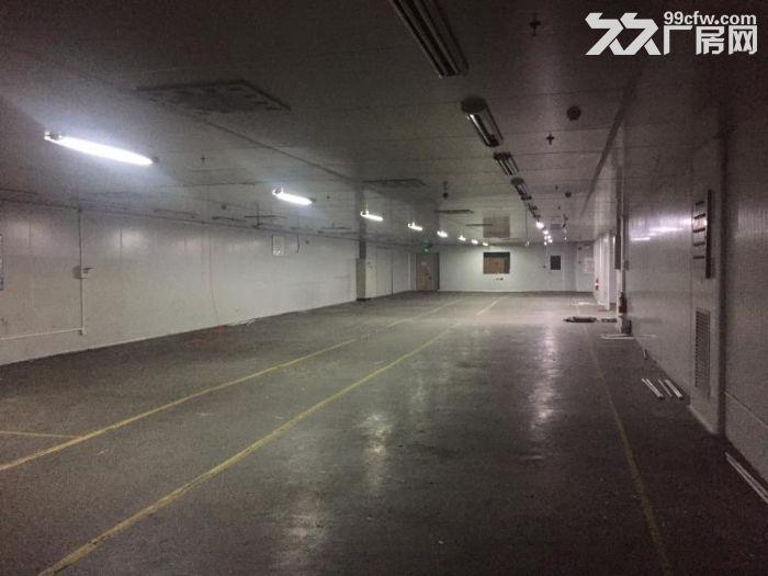 张槎仓库/厂房的出租-图(2)