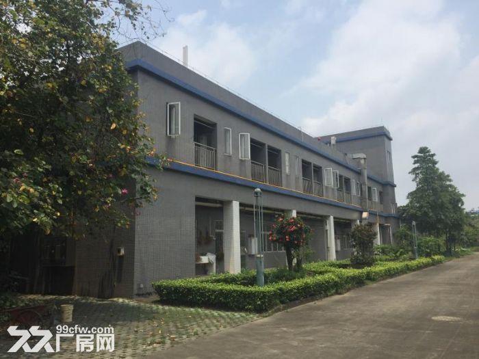 张槎仓库/厂房的出租-图(1)