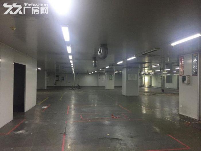 张槎仓库/厂房的出租-图(4)