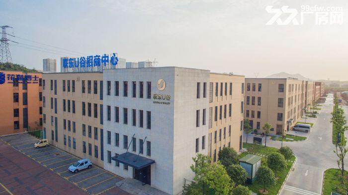 武汉50年产权,双证齐全,紧邻区中心,7.2米层高独栋厂房,可按揭。-图(4)