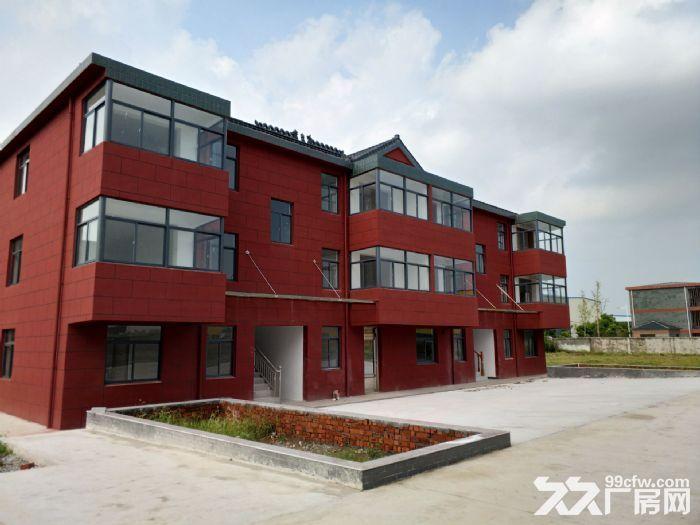 全新标准化厂房对外招租-图(4)