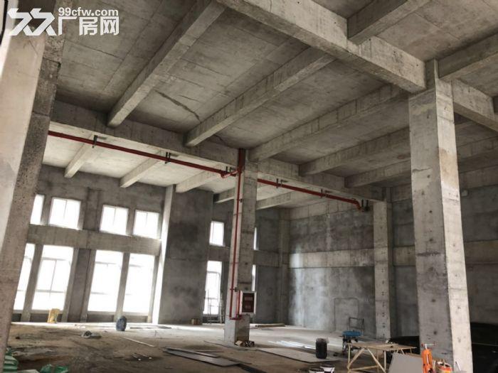 核心区工业厂房有产权生产研发办公一体-图(2)