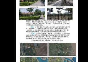 浦东板块稀缺100亩土地位置好国有土地无贷款