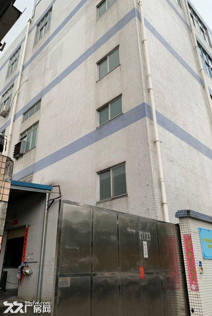 新会睦洲工业园楼上3000方出租适合灯饰轻污染-图(1)