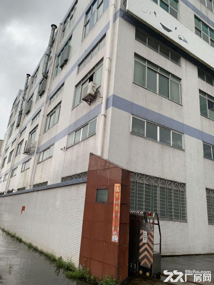 新会睦洲工业园楼上3000方出租适合灯饰轻污染-图(3)