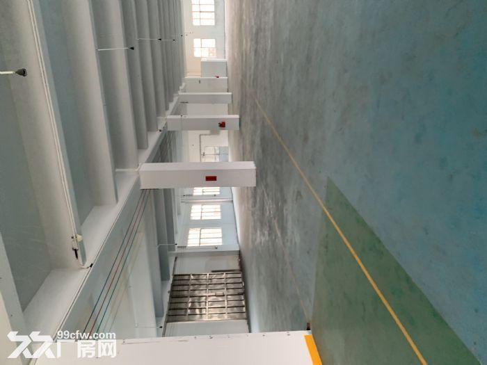 江海高新区沙津横700方厂房出租带办公室可分租-图(1)