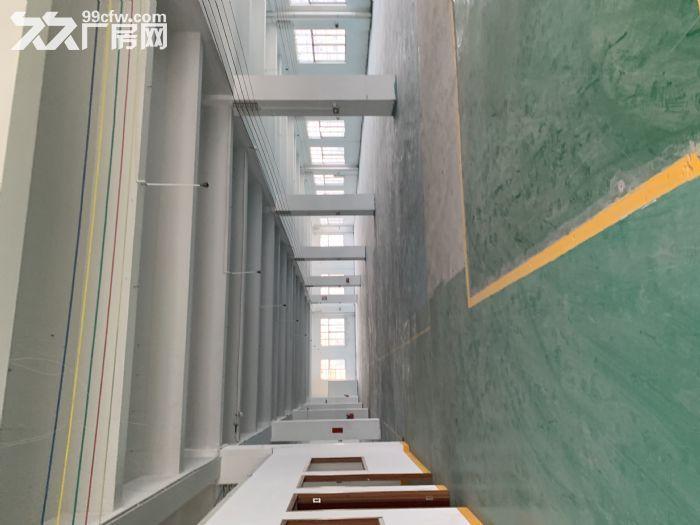 江海高新区沙津横700方厂房出租带办公室可分租-图(3)