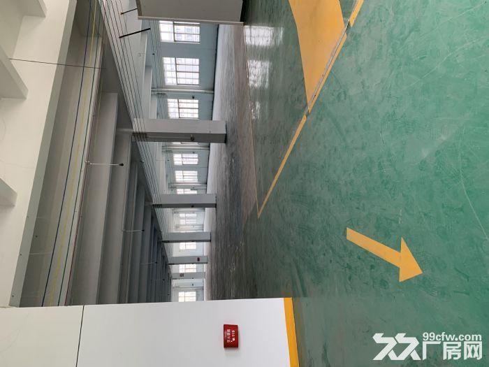 江海高新区沙津横700方厂房出租带办公室可分租-图(4)