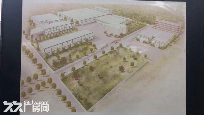 出租工业厂房独门独院可分租证件齐全54000平米有宿舍办公楼带装修-图(3)