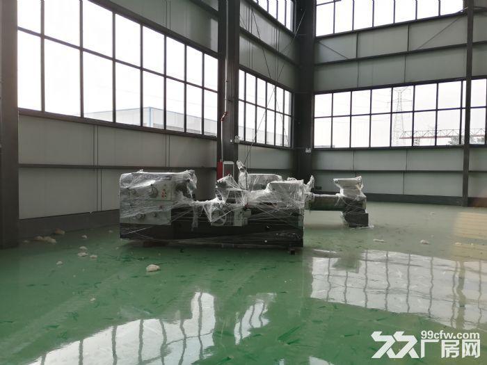 潍坊滨海新区厂房出租钢结构厂房出租-图(2)