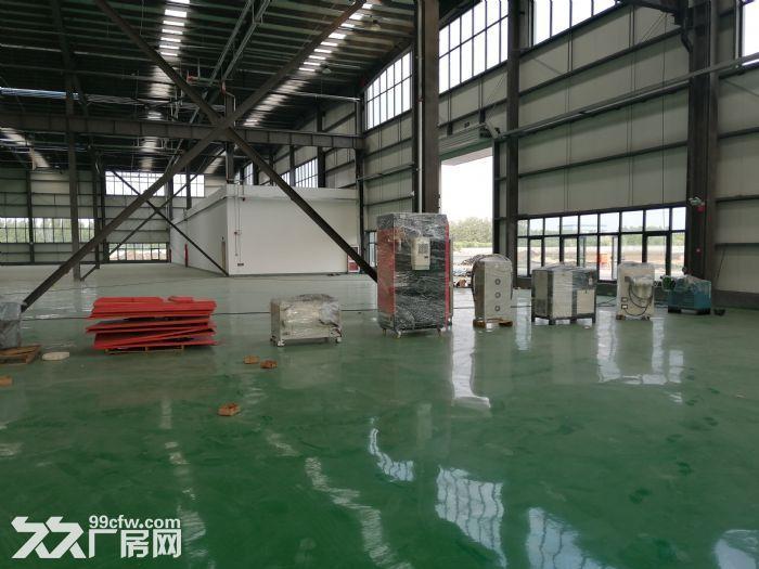 潍坊滨海新区厂房出租钢结构厂房出租-图(3)