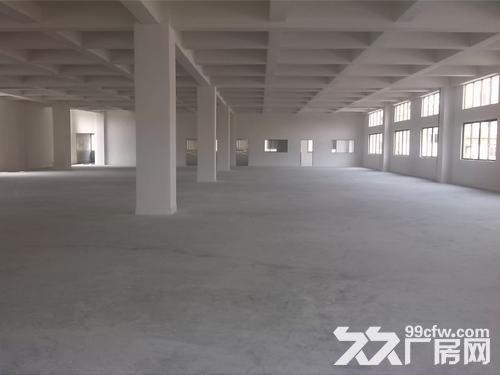5楼1000平方厂房出租-图(1)