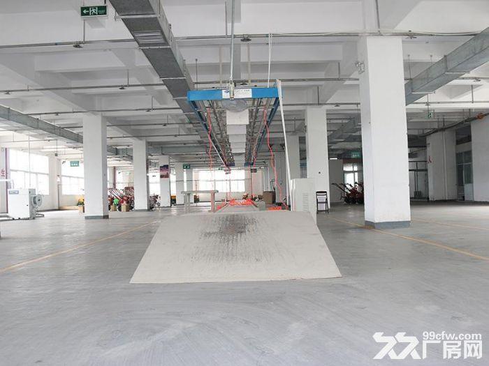 全新标准厂房8000平方出租-图(2)
