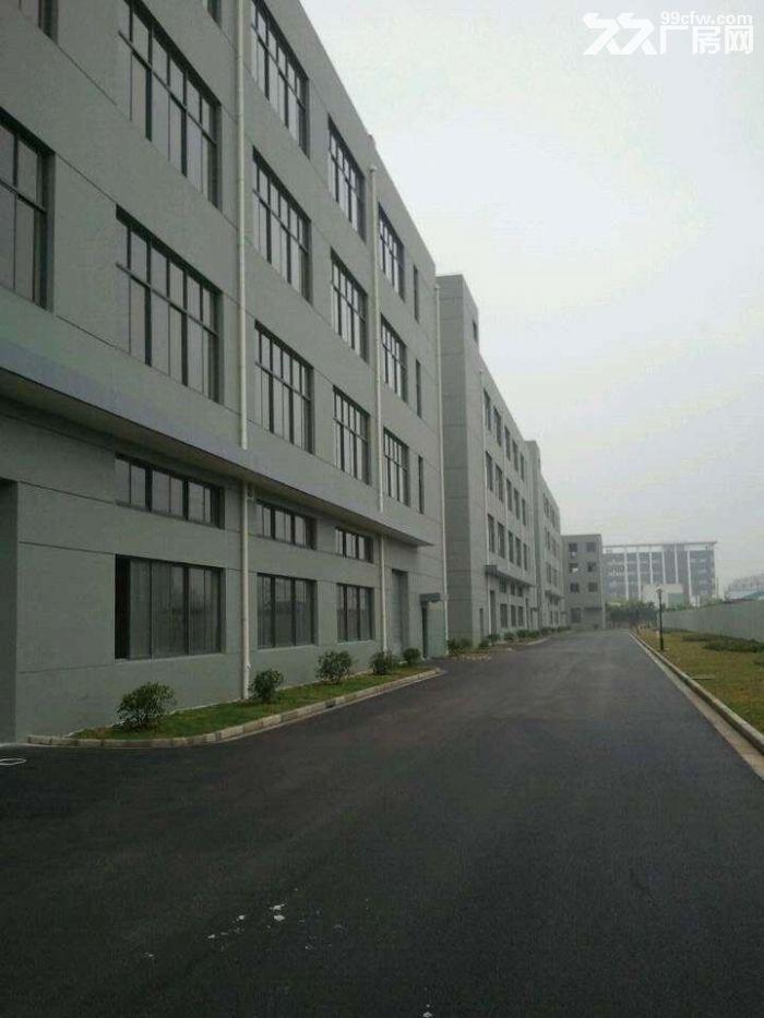 小面积85平米起分,可办公、展厅、仓储、生产等-图(1)