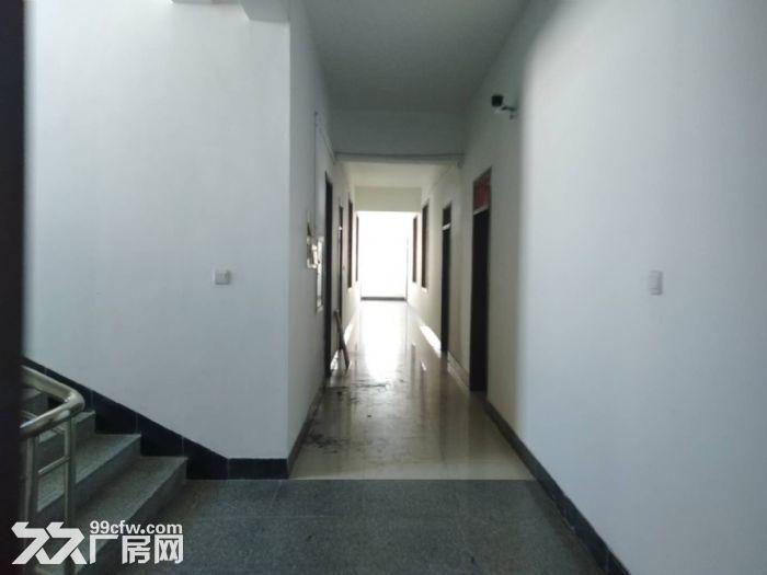 北上坊厂房出租二三层-图(2)