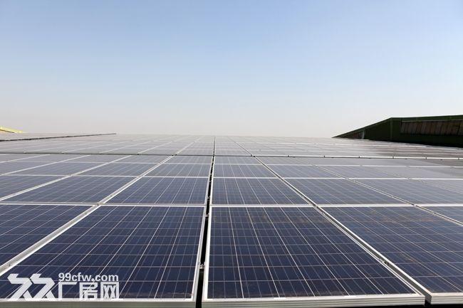 安海独门独院6100平方钢结构厂房招租-图(1)
