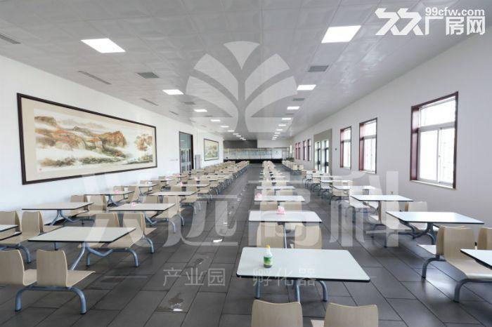 73平米精装办公室直租可免费注册公司-图(5)
