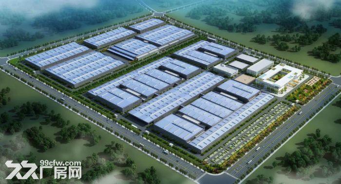 日照经济开发区钻集智能装备产业园厂房出售-图(2)