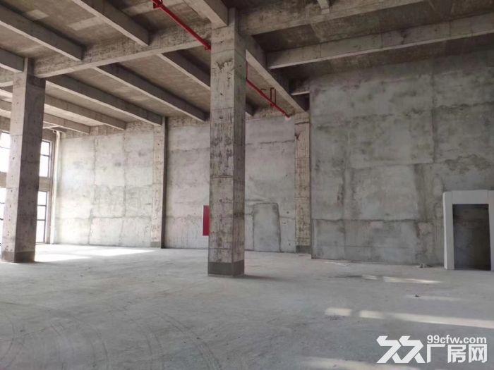 南京江北新区50年产权厂房出售-图(4)