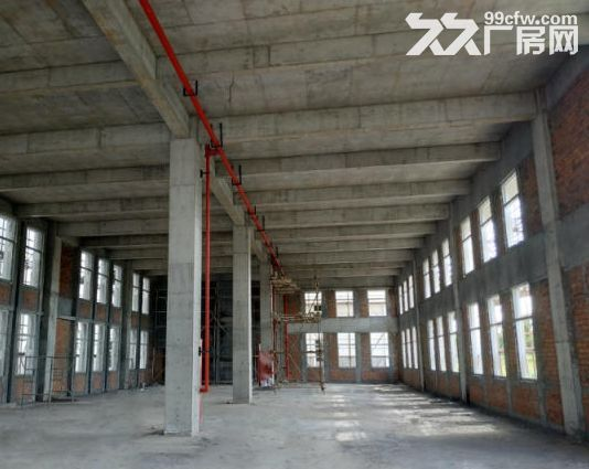 南京江北新区50年产权厂房出售-图(3)