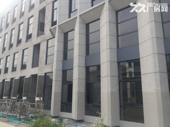 南京江北新区50年产权厂房出售-图(7)