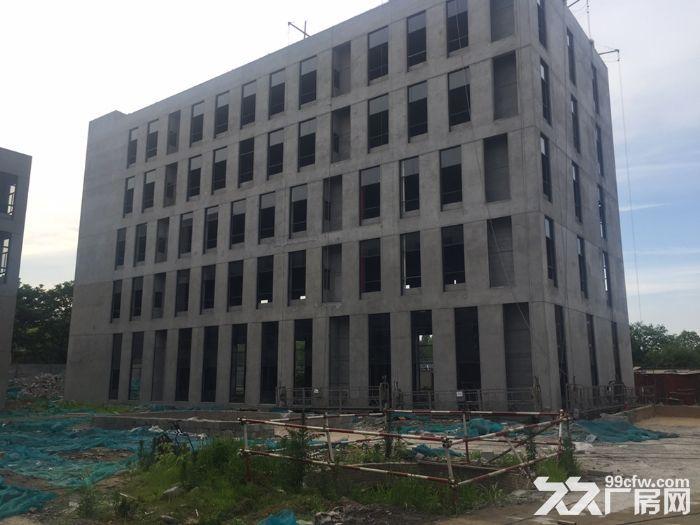 南京江北新区50年产权厂房出售-图(6)