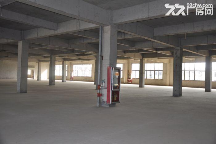大型土建干仓层高8米配备专业货梯和月台火热招租-图(1)
