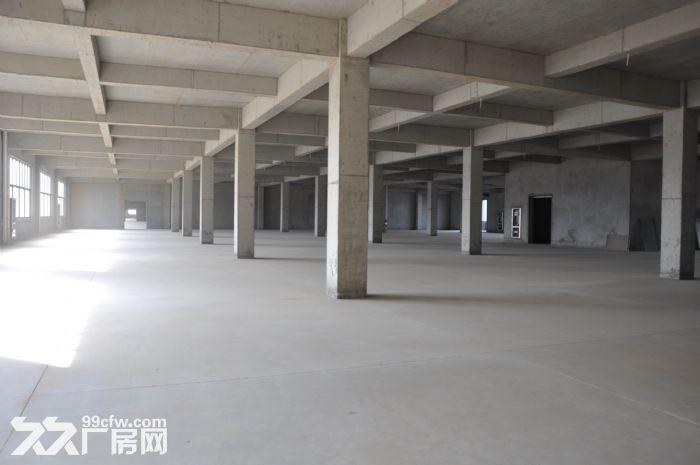 大型土建干仓层高8米配备专业货梯和月台火热招租-图(3)