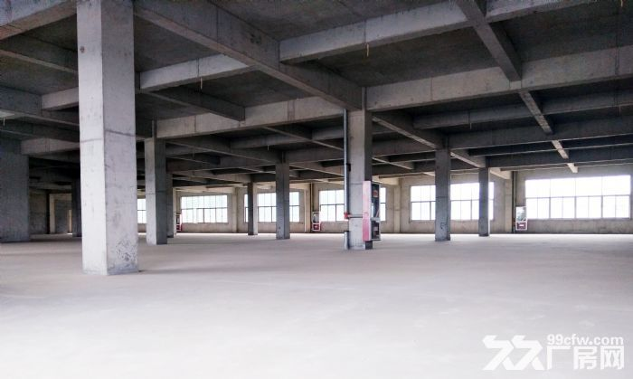 大型土建干仓层高8米配备专业货梯和月台火热招租-图(4)