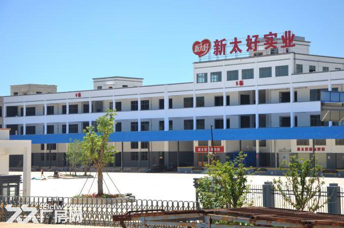 大型土建干仓层高8米配备专业货梯和月台火热招租-图(5)