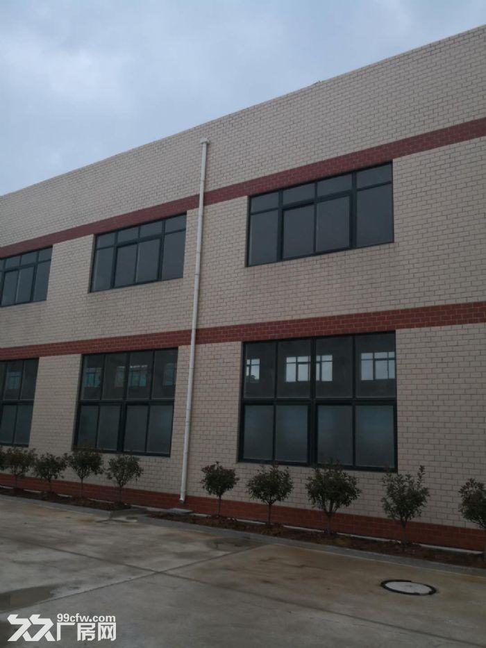 大面积厂房办公楼可实地考察有图-图(2)