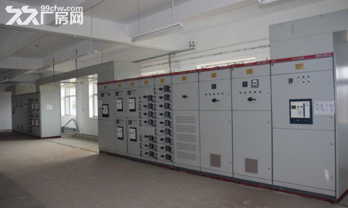 黑龙江荣程泰来产业园厂房招租-图(5)
